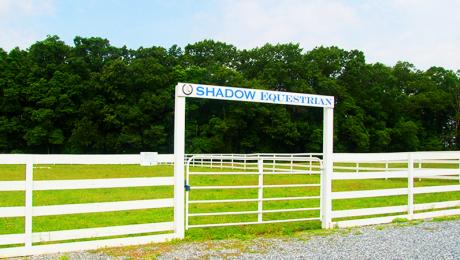 Shadow Equestrian